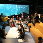 CretAquarium educational