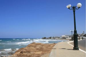 crete gournes